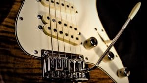 Photo shows guitar pickups to readers