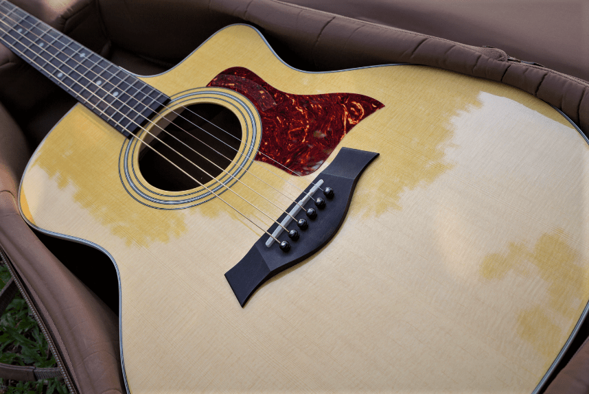 5 Best Gig Bags for Acoustic Guitars in 2020 – Buyer's Guide