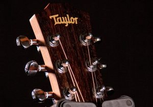 photo displays grea Taylor acoustic Guitar
