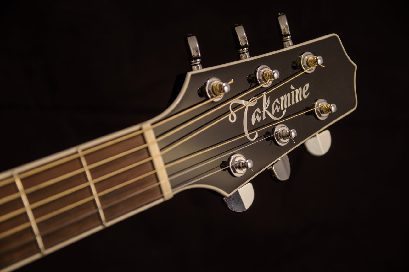 5 Best Takamine Acoustic Guitars in 2021 – Buyer's Guide